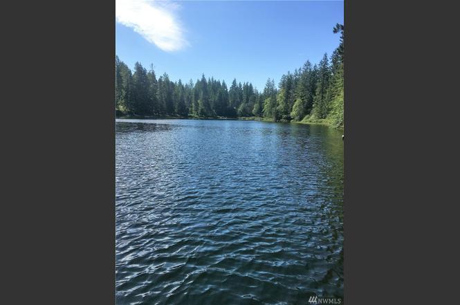 310 NE Lake Ridge Dr, Belfair, WA 98528