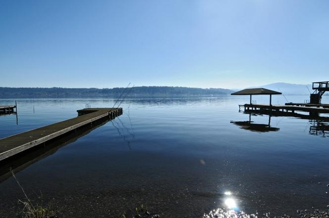 Lake Sammamish kokanee, King County, Washington - King County