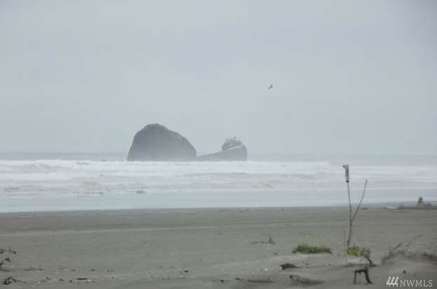 51 S Copalis Rock Lane Beach Wa 98535