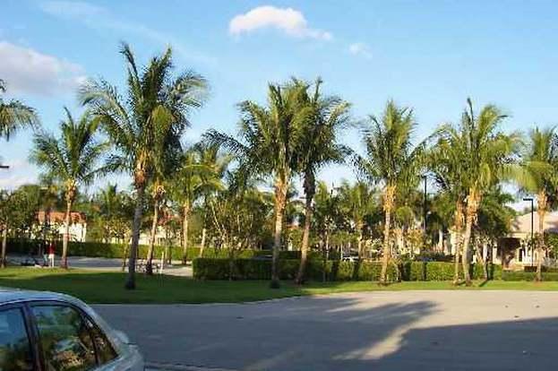 8456 Via D' Oro, Boca Raton, FL 33433 - 3 beds/2 baths Doro House Desert Plants on