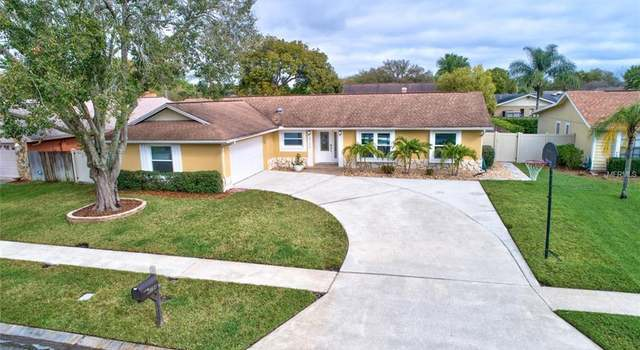 14517 Thornfield Ct, Tampa, FL - 3 beds/2 baths