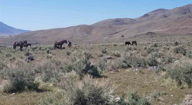 Vacant Land in Reno, NV 89510