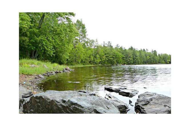 0 lake rd princeton me 04668 mls 1269679 redfin for Big fish princeton