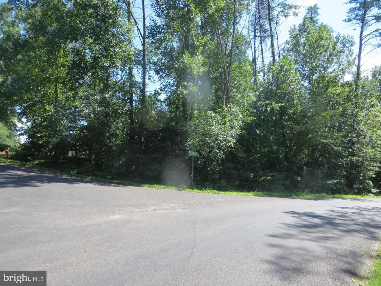100 Pine Valley Rd, Locust Grove, VA 22508   MLS ...