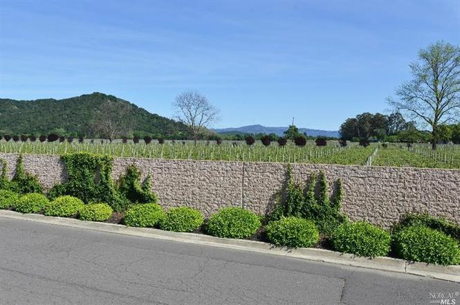 167 Riesling Cir Yountville CA 94599