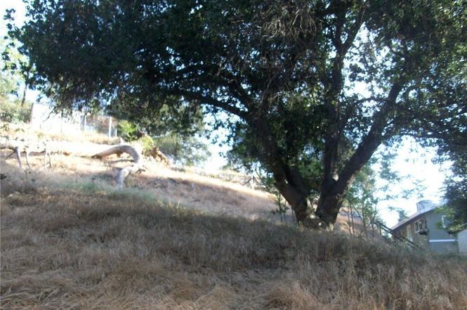 Best Beds In The San Fernando Valley