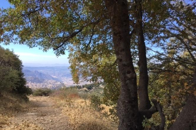 CaliforniaPalomar Mountain Middle Eastern Dating
